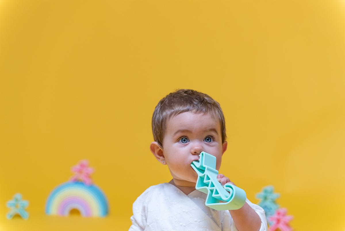 dena-animals-4-galeria-dena-toys
